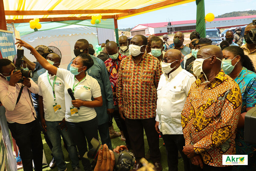 President Akufo-Addo Visits Akro-Farms Ltd.